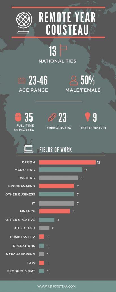 remote year fields of work